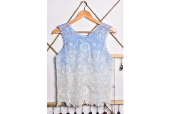 Mickey two shaded Lace fabric top